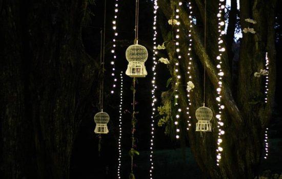 luces para jardin